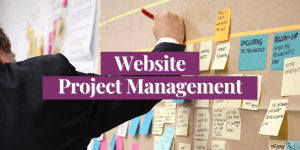 Website Project Management is carefully planned.